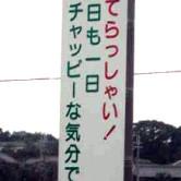 チャッピー(*゚▽゚*)
